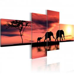 Obraz  Rodina slonů