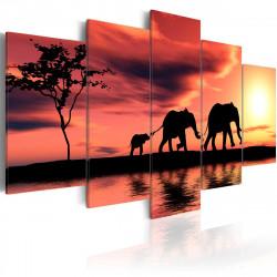 Obraz  Rodina afrických slonů