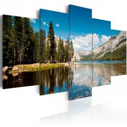 Obraz  Horské jezero v létě