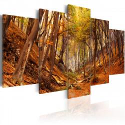 Obraz - Orange autumn