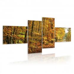 Obraz - Lesní cestička