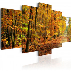 Obraz - Aleje mezi barevnými listy
