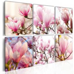 Obraz  Jižní magnolie
