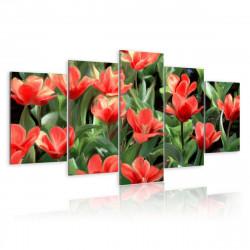 Obraz  Květinový záhon