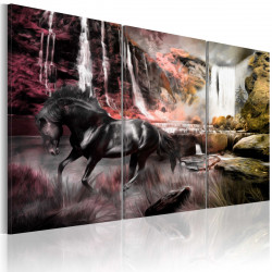 Obraz  Black horse by a waterfall