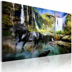 Obraz  Horse on the skyblue waterfall background