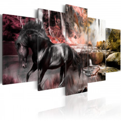 Obraz  Black horse on crimson sky background