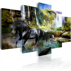Obraz  Black horse on the background of paradise waterfall