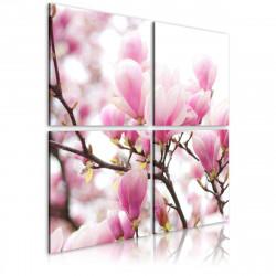 Obraz  Blooming magnolia tree